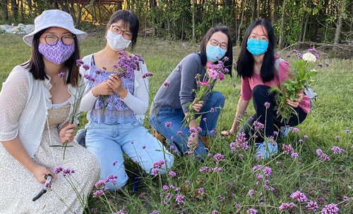 Students picking flowers